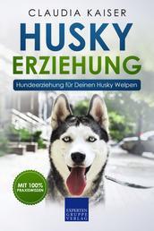 Husky Erziehung: Hundeerziehung für Deinen Husky Welpen