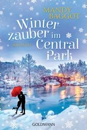 Winterzauber im Central Park - Roman