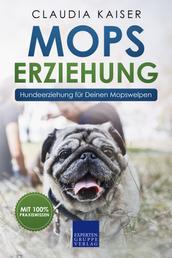 Mops Erziehung - Hundeerziehung für Deinen Mops Welpen