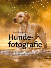 Hundefotografie - Die besten Tipps für das perfekte Hundefoto