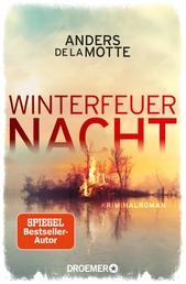 Winterfeuernacht - Kriminalroman