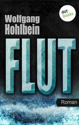 Flut - Roman. Elementis - Band 1