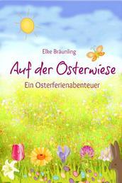 Auf der Osterwiese - Ein Osterferienabenteuer - Erzählung für Kinder rund um Sitten und Gebräuche rund um Ostern und die Osterzeit