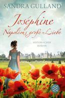 Sandra Gulland: Joséphine - Napoléons große Liebe ★★★★