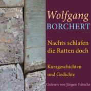 Wolfgang Borchert: Nachts schlafen die Ratten doch - Kurzgeschichten und Gedichte