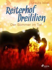 Reiterhof Dreililien 4 - Der Sommer im Tal