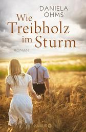 Wie Treibholz im Sturm - Roman