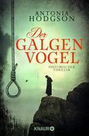 Antonia Hodgson: Der Galgenvogel ★★★★