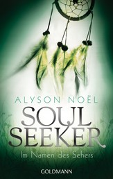 Im Namen des Sehers - - Soul Seeker 3 - Roman
