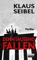 Klaus Seibel: Zehntausend Fallen