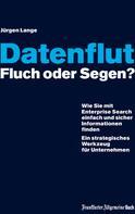 Jürgen Lange: Datenflut – Fluch oder Segen?