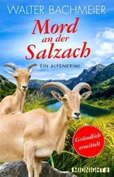 Mord an der Salzach - Ein Alpenkrimi