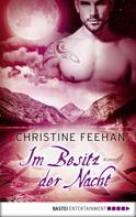 Christine Feehan: Im Besitz der Nacht ★★★★