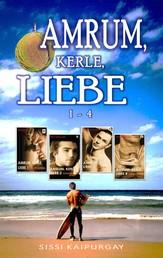 Amrum, Kerle, Liebe Band 1 - 4