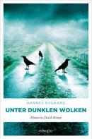 Hannes Nygaard: Unter dunklen Wolken ★★★★