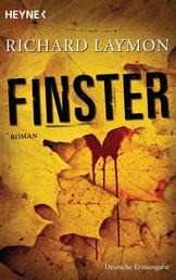 Finster - Roman