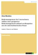 Aissa Marabou: Risikomanagement für Unternehmen. Aufbau eines geeigneten Risikomanagements anhand von Beispielen aus der unternehmerischen Praxis
