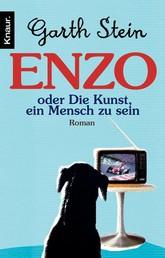 Enzo. Die Kunst, ein Mensch zu sein - Roman