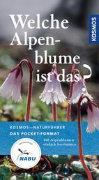 Welche Alpenblume ist das? - 168 Alpenblumen einfach bestimmen