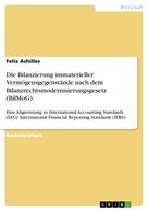 Felix Achilles: Die Bilanzierung immaterieller Vermögensgegenstände nach dem Bilanzrechtsmodernisierungsgesetz (BilMoG)