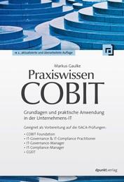 Praxiswissen COBIT - Grundlagen und praktische Anwendung in der Unternehmens-IT