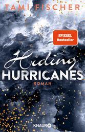 Hiding Hurricanes - Roman