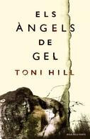 Toni Hill: Els àngels de gel