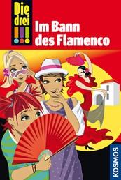 Die drei !!!, 41, Im Bann des Flamenco (drei Ausrufezeichen)