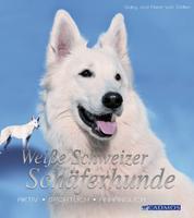 Weiße Schweizer Schäferhunde - Aktiv, sportlich, anhänglich
