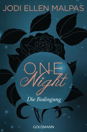 One Night - Die Bedingung - Die One Night-Saga 1