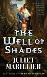 The Well of Shades - Book Three of The Bridei Chronicles