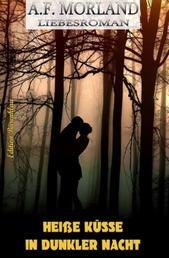 Heiße Küsse in dunkler Nacht - Roman