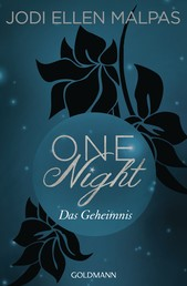 One Night - Das Geheimnis - Die One Night-Saga 2