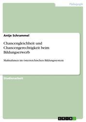 Chancengleichheit und Chancengerechtigkeit beim Bildungserwerb - Maßnahmen im österreichischen Bildungssystem