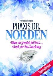 Praxis Dr. Norden 2 – Arztroman - Doppelband