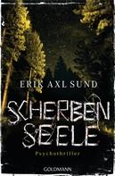 Erik Axl Sund: Scherbenseele ★★★