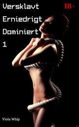 Versklavt Erniedrigt Dominiert 1 - BDSM Sammelband
