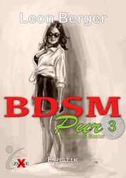 BDSM Pur 3 - Ich und mein Master