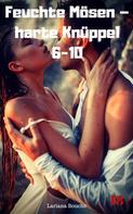 Lariana Bouche: Feuchte Mösen – harte Knüppel 6-10