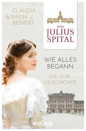Das Juliusspital – Wie alles begann - Die Vorgeschichte