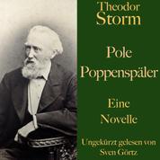 Theodor Storm: Pole Poppenspäler - Eine Novelle. Ungekürzt gelesen.