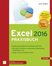 Excel 2016 Praxisbuch - Von der ersten Tabellenkalkulation bis hin zur Nutzung von ODBC und Power Pivot