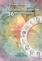 Die Schüßler-Therapie mit 36 Mineralsalzen - Mit 36 Farbtafeln und weiterführenden Gesichts- und Körperzeichen 2 Bände (Lehrbuch mit Farbtafelnbeiheft)
