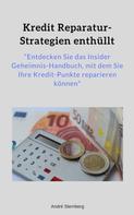 André Sternberg: Kredit Reparatur-Strategien enthüllt