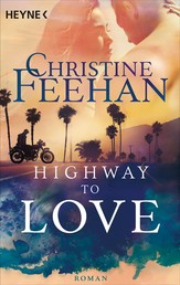 Highway to Love - Roman