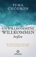 Pema Chödrön: Das Unwillkommene willkommen heißen