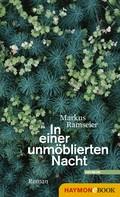 Markus Ramseier: In einer unmöblierten Nacht