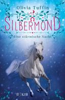 Olivia Tuffin: Silbermond: Eine stürmische Nacht