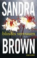 Sandra Brown: Blindes Vertrauen ★★★★