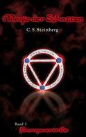 C.S. Steinberg: Magie der Schatten 2: Feuerspuren im Eis